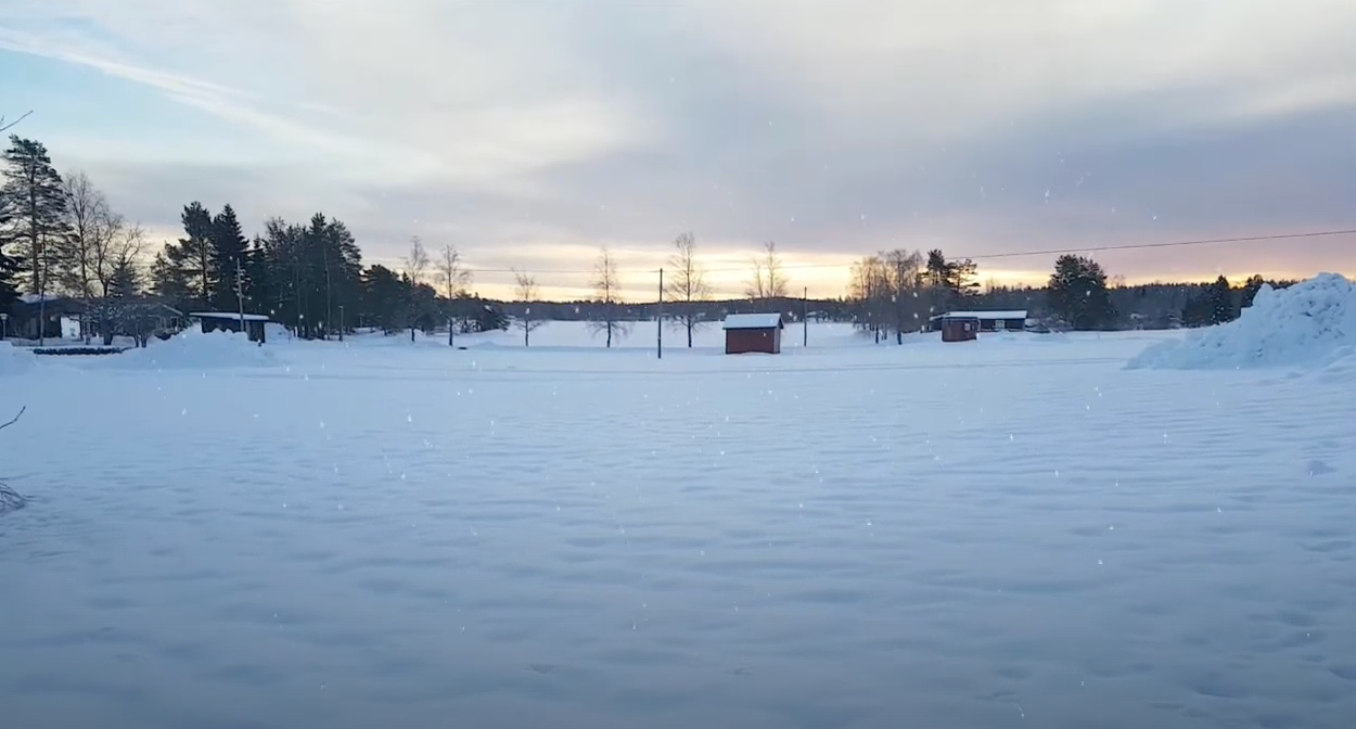 oung Artists önskar God Jul & Gott Nytt År!